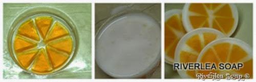 Citrus Slice 3