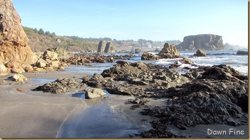 Harris Beach_176