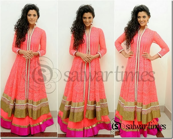Long_Sleeves_Salwar_Kameez_collection(3)