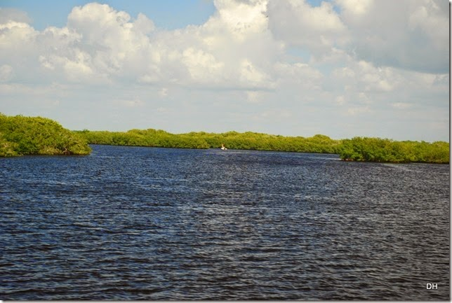 03-14-15 Boat Trip on Peace River Punta Gorda (62)