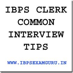 IBPS CLERK INTERVIEW TIPS 2013