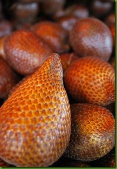 Snake Fruit1