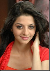 vedhika_new_photos