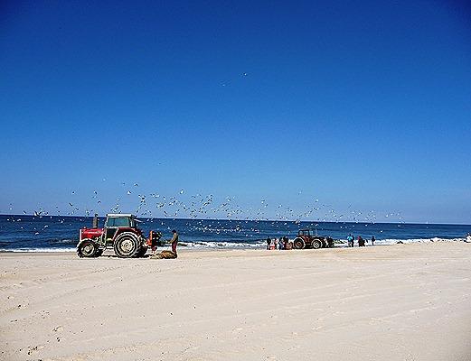 trator na pescaria praia de Mira