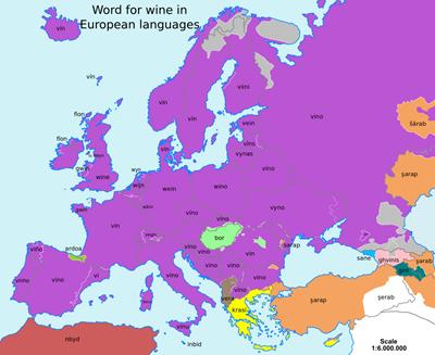wine_vino_bor
