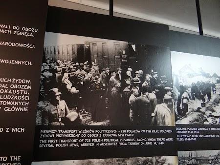 09. Primii prizonieri la Auschwitz.JPG