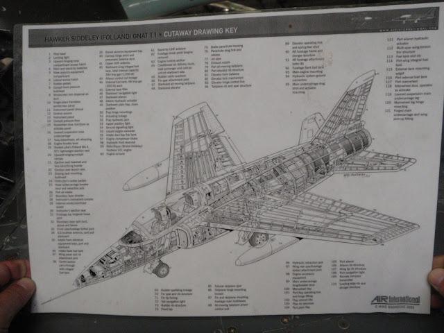 P9106732.JPG