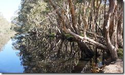 Deepwater National Park