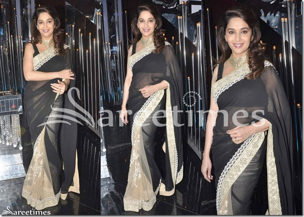 Madhuri_Dixit_Half_and_Half_Saree