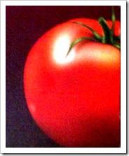 tomatnya