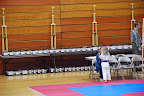Tae Kwon Do Governor's Cup Championships