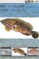 Screenshot of 沖縄釣魚図鑑