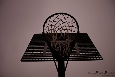 chip_20111117_basketkorg2