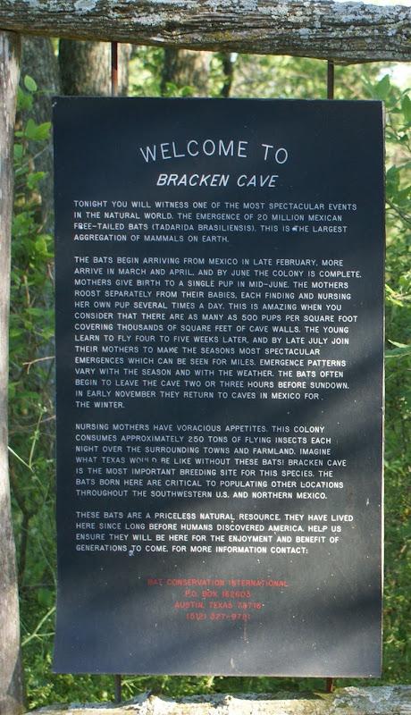 bracken-bat-cave-14