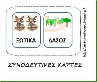 ΔΑΣΟς4