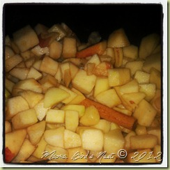 apple chunks