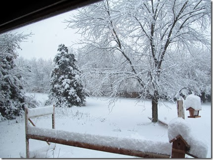 snow12-14-13f
