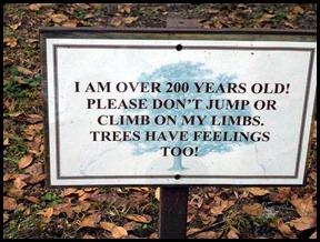 00b- Tree Sign