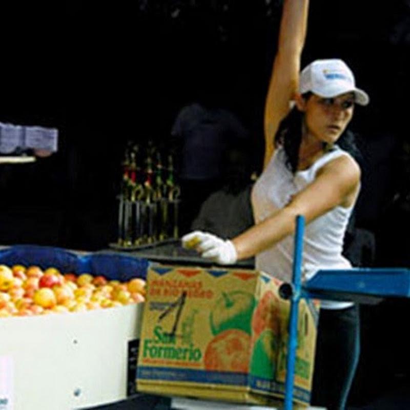Recorriendo el Valle del Rio Negro: Fiesta Nacional de la Manzana.