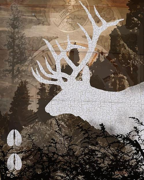 sharon marston elk