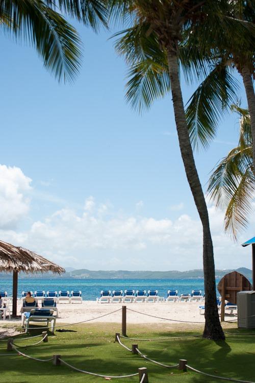 Palomino Island blog-11