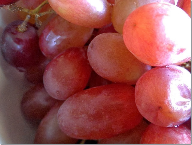 grapes-public-domain-pictures-1 (2219)