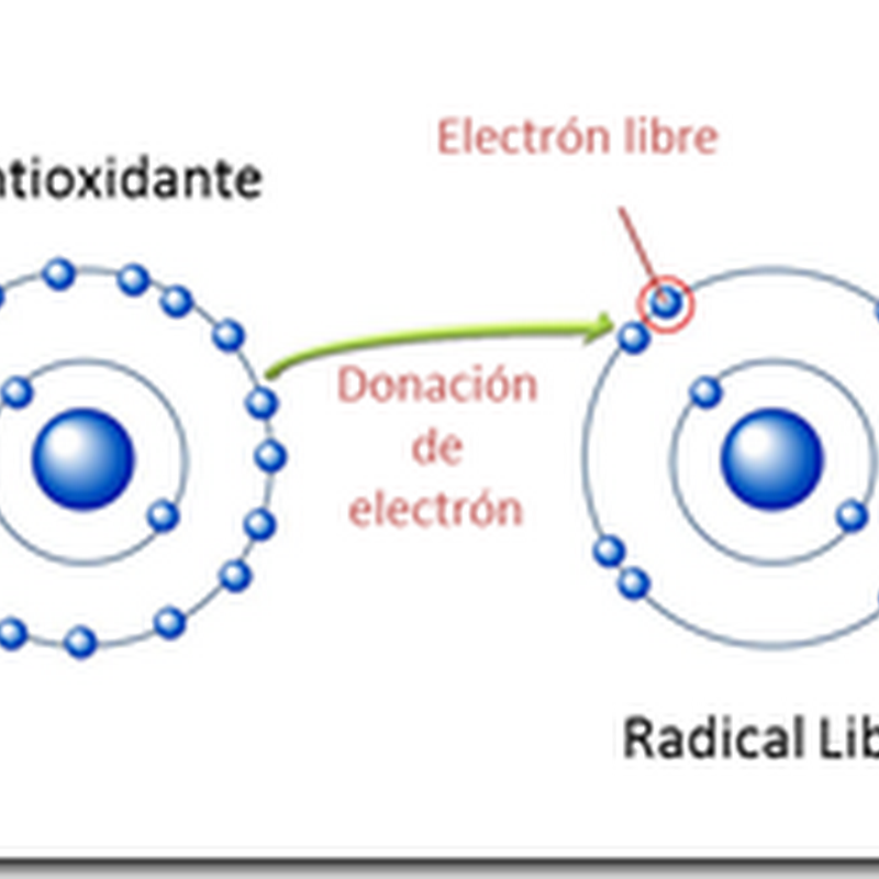 Capacidad antioxidante del ácido úrico. ¿Sirve para algo el ácido úrico?