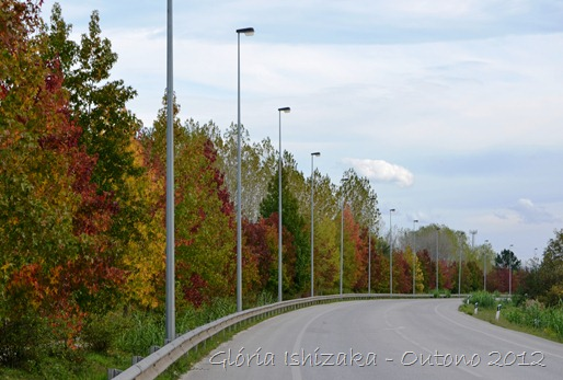 14 - Glória Ishizaka - Folhas de Outono