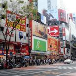shibuya shopping street in Shibuya, Tokyo, Japan