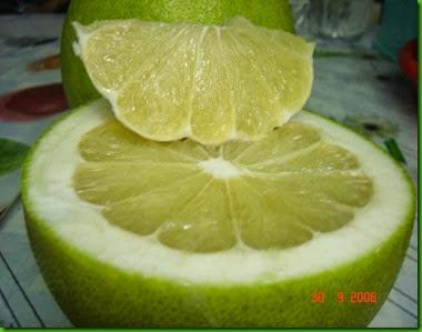 Vietnamese White Pomelo