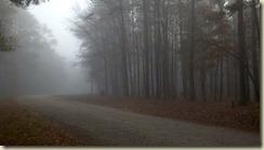 03 foggy campground