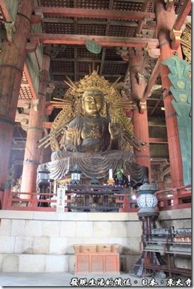 日本奈良-東大寺15