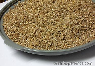 HBinFive-Emmer-Bread 003
