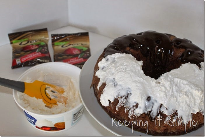 #ad chocolate-fudge-cake-with-Dove-Fruit-Toppings (8)