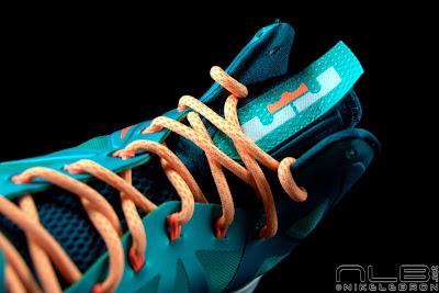 lebron10 dolphins 50 web black The Showcase: Nike LeBron X Setting / Miami Dolphins
