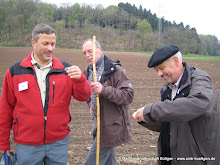 2010-05-15-Trier-11.15.14.jpg