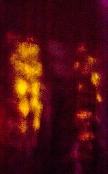 2013-09-13-1.jpg