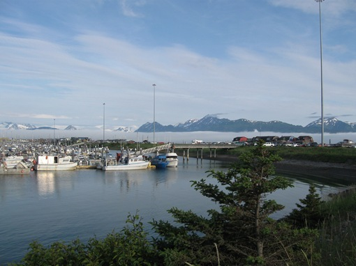 Winter in the desert summer in the mtns rain in seward for Do senior citizens need a fishing license