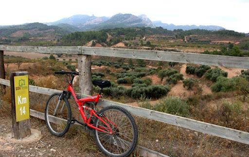 Bici Via Verda.JPG