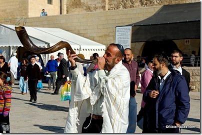 Man blowing shofar at Western Wall, tb042605429
