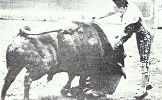 Paco Camino Estocada (Los heterodoxos) 001