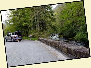 10a - returning on Newfound Gap Road - one of many beautiful pulloffs
