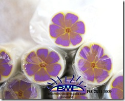 PCC-2011-1009