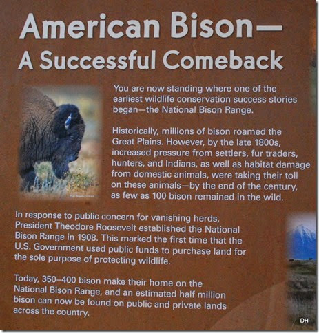 08-19-14 A National Bison Range (21)a