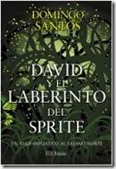 david-y-el-laberinto-del-sprite_9788448001902