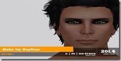 22769 ~ visage Guyliner