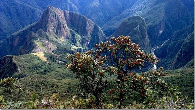 Machu_Picchu_WP_20130706_039