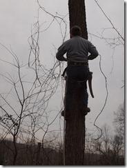tree fun march 2013 011