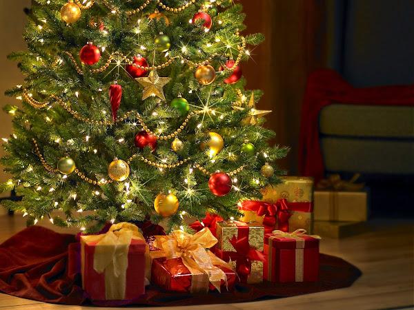 Christmas Tree Xmas Balls Decoration Photo Christmas Decorations Pictures
