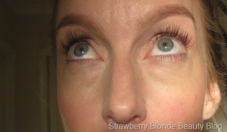 Nouveau-Lash-extensions-HD-Brows-pics-review (3)